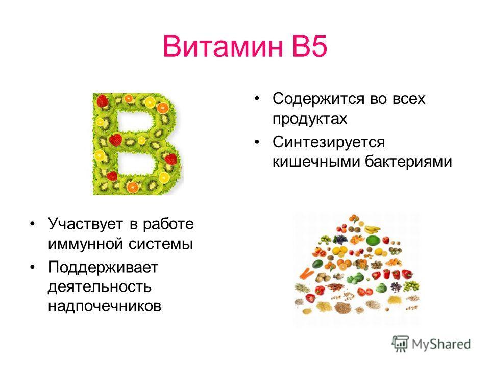 Витамин В5 Содержится во всех продуктах Синтезируется кишечными бактериями Участвует в работе иммунной системы Поддерживает деятельность надпочечников