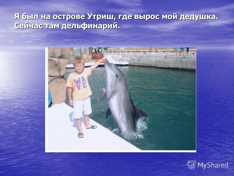 Я был на острове Утриш, где вырос мой дедушка. Сейчас там дельфинарий.
