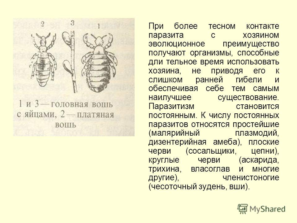 При более тесном контакте паразита с хозяином эволюционное преимущество получают организмы, способные дли тельное время использовать хозяина, не приводя его к слишком ранней гибели и обеспечивая себе тем самым наилучшее существование. Паразитизм стан