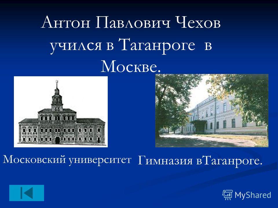 Антон Павлович Чехов учился в Таганроге в Москве. Гимназия вТаганроге. Московский университет