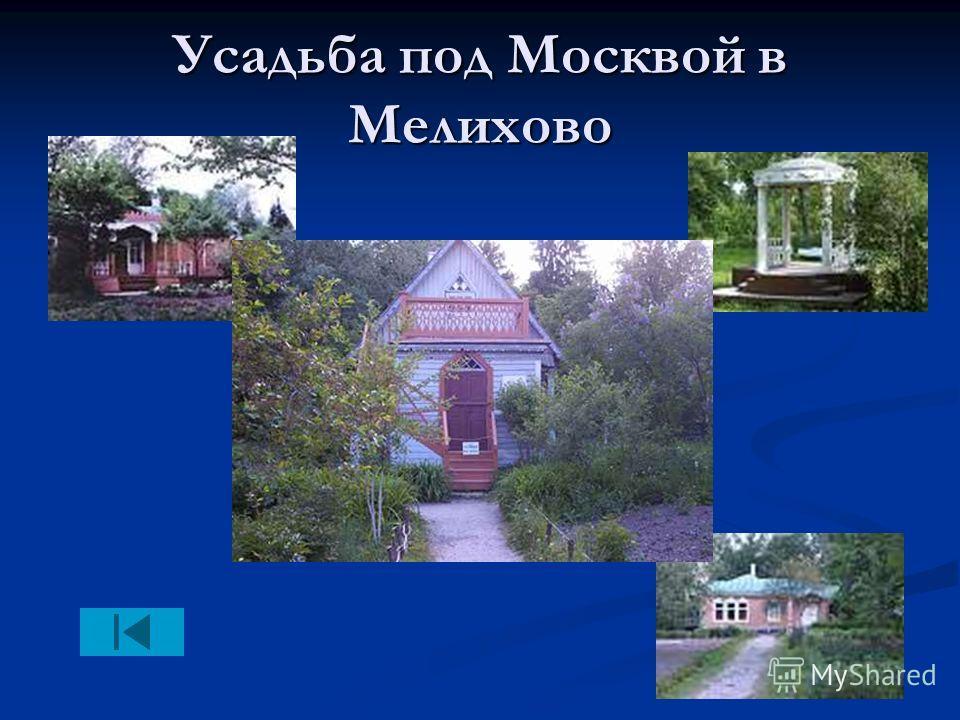 Усадьба под Москвой в Мелихово