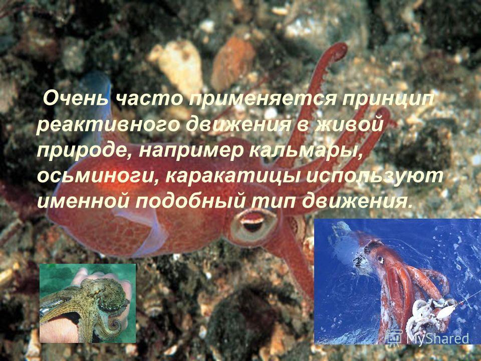 Очень часто применяется принцип реактивного движения в живой природе, например кальмары, осьминоги, каракатицы используют именной подобный тип движения.