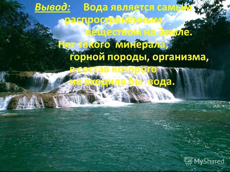 Вывод: Вода является самым распространённым веществом на Земле. Нет такого минерала, горной породы, организма, в состав которого не входила бы вода.