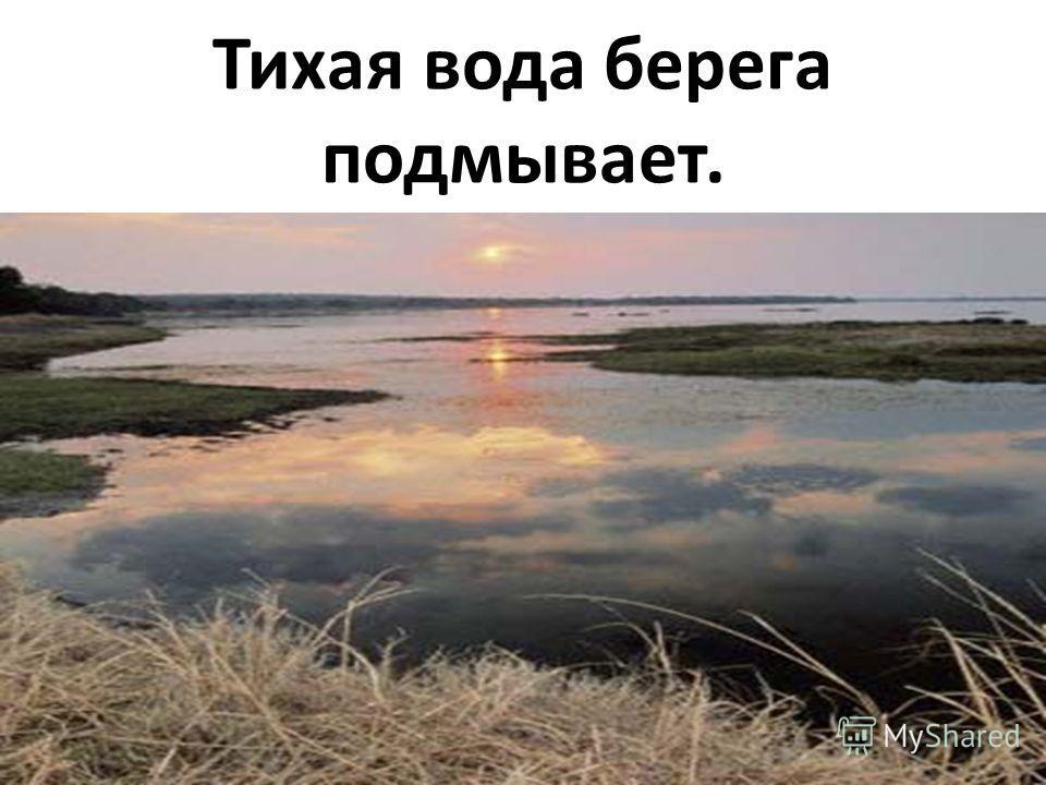 Тихая вода берега подмывает.
