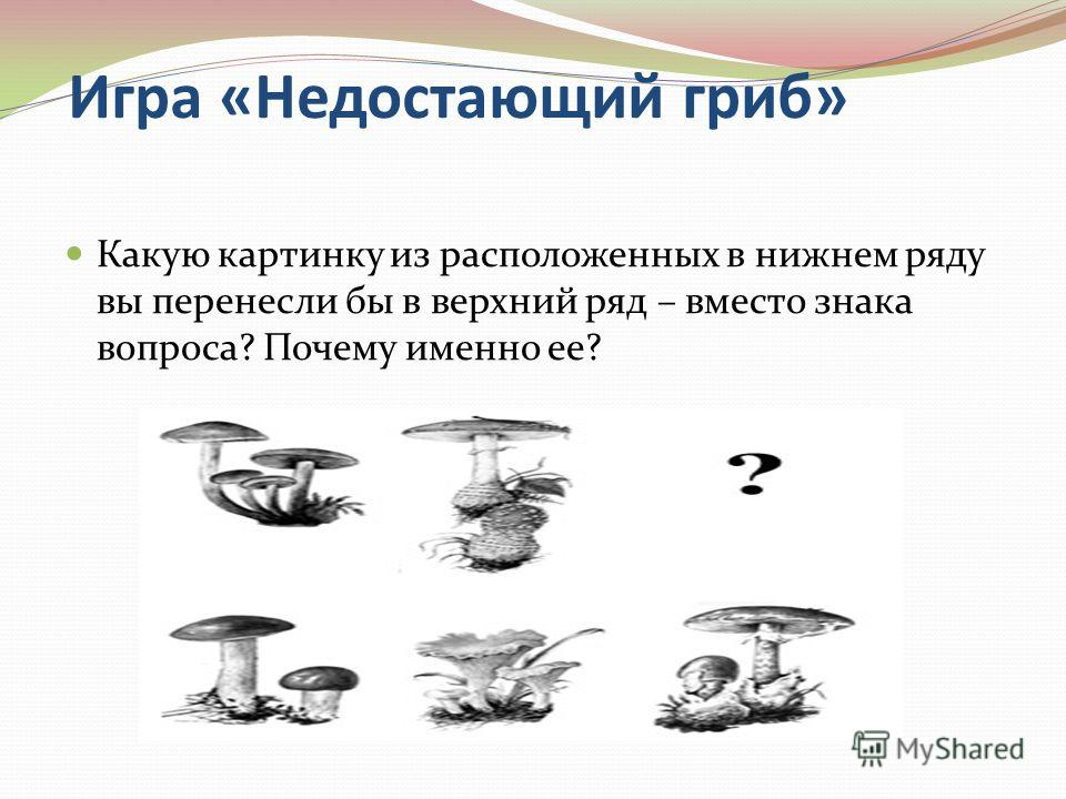 Игра «Недостающий гриб» Какую картинку из расположенных в нижнем ряду вы перенесли бы в верхний ряд – вместо знака вопроса? Почему именно ее?
