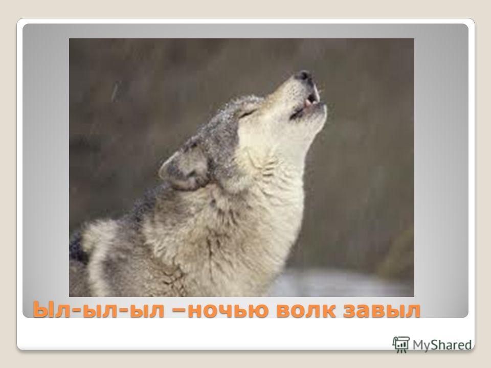 Ыл-ыл-ыл –ночью волк завыл