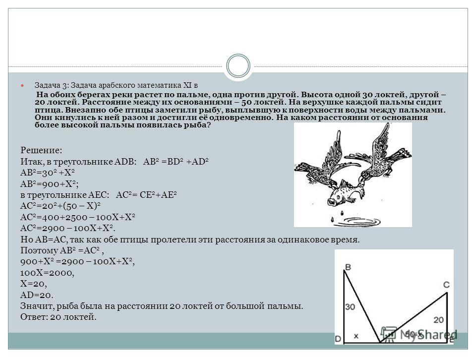 Задача 3: Задача арабского математика XI в На обоих берегах реки растет по пальме, одна против другой. Высота одной 30 локтей, другой – 20 локтей. Расстояние между их основаниями – 50 локтей. На верхушке каждой пальмы сидит птица. Внезапно обе птицы