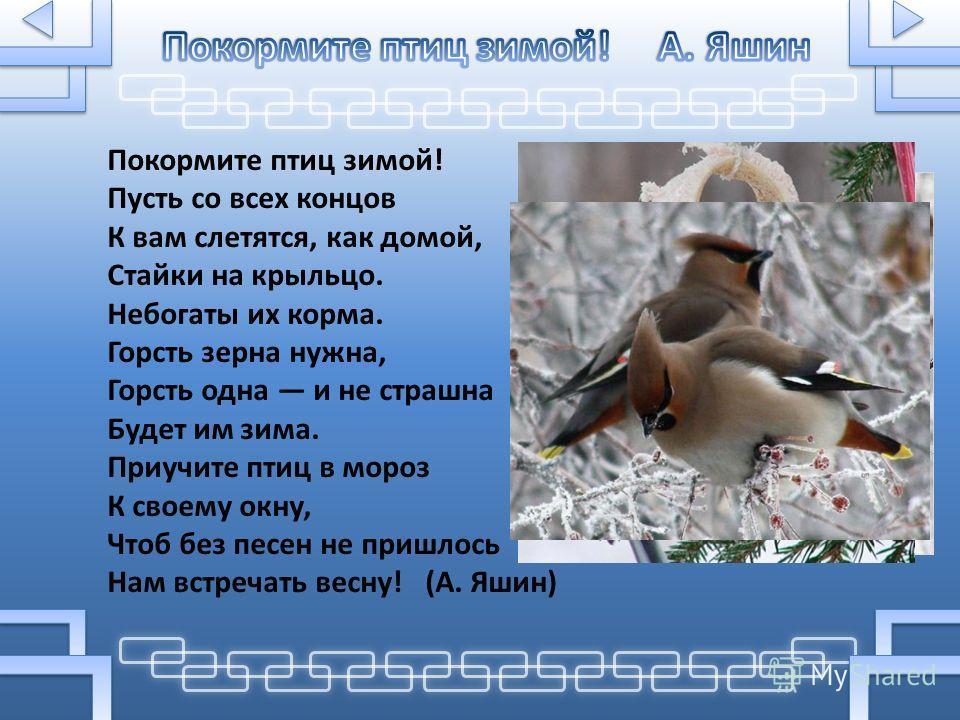 Покормите птиц зимой! Пусть со всех концов К вам слетятся, как домой, Стайки на крыльцо. Небогаты их корма. Горсть зерна нужна, Горсть одна и не страшна Будет им зима. Приучите птиц в мороз К своему окну, Чтоб без песен не пришлось Нам встречать весн