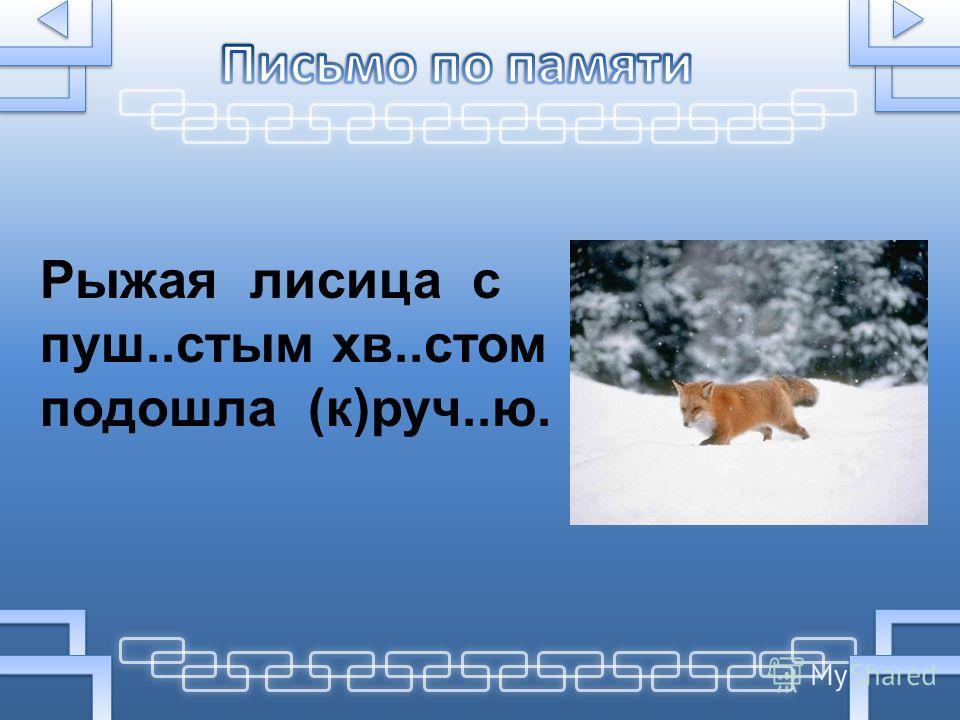 Рыжая лисица с пуш..стым хв..стом подошла (к)руч..ю.