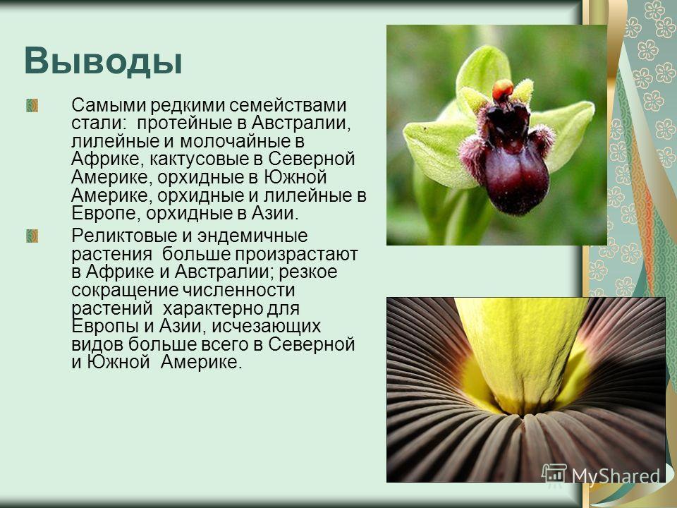 Выводы Самыми редкими семействами стали: протейные в Австралии, лилейные и молочайные в Африке, кактусовые в Северной Америке, орхидные в Южной Америке, орхидные и лилейные в Европе, орхидные в Азии. Реликтовые и эндемичные растения больше произраста