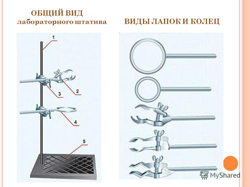 ОБЩИЙ ВИД лабораторного штатива ВИДЫ ЛАПОК И КОЛЕЦ