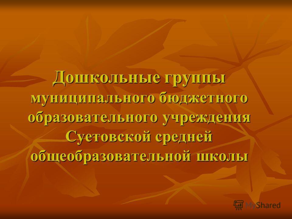 Дошкольные группы муниципального бюджетного образовательного учреждения Суетовской средней общеобразовательной школы