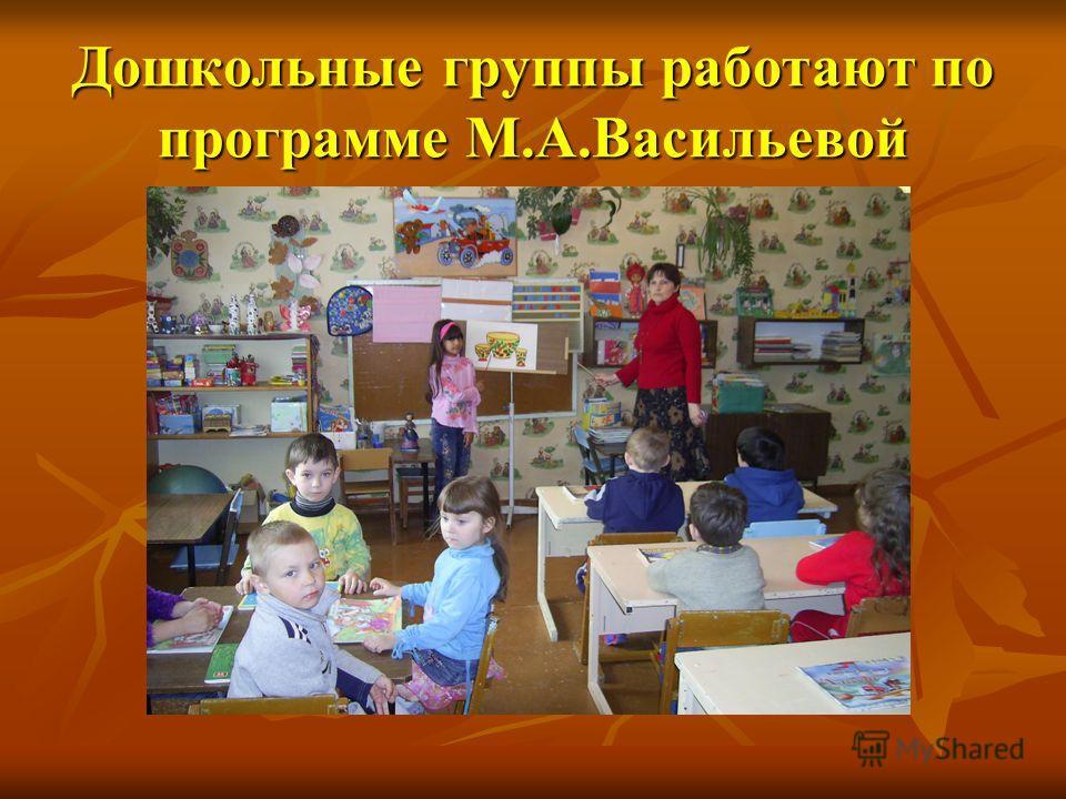 Дошкольные группы работают по программе М.А.Васильевой