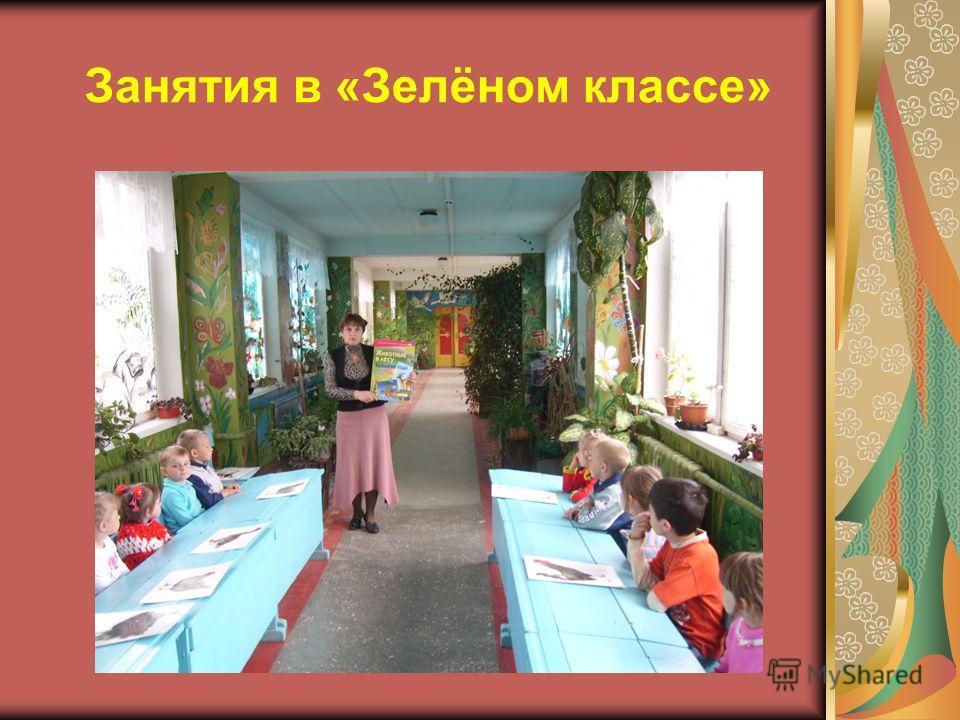 Занятия в «Зелёном классе»