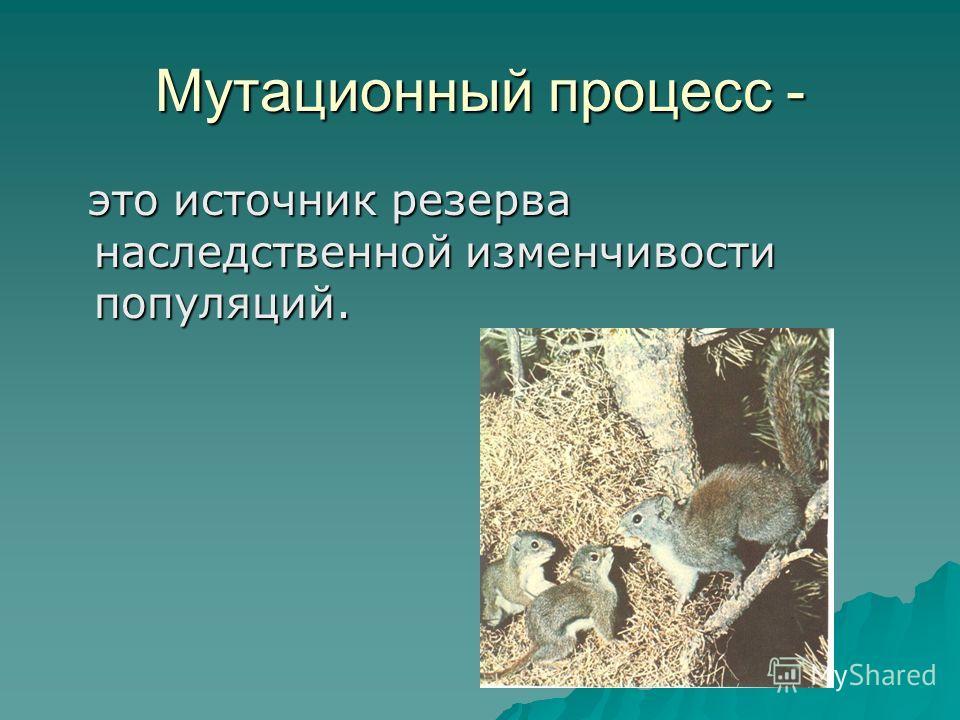 Мутационный процесс - это источник резерва наследственной изменчивости популяций.