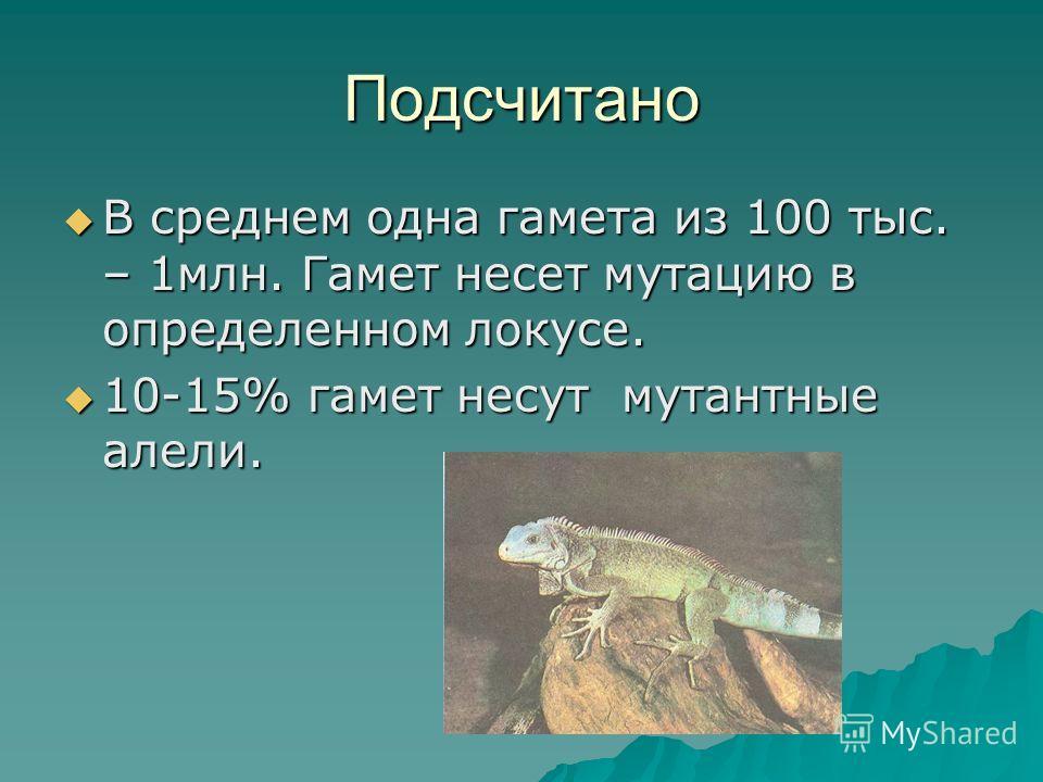 Подсчитано В среднем одна гамета из 100 тыс. – 1млн. Гамет несет мутацию в определенном локусе. 10-15% гамет несут мутантные алели.