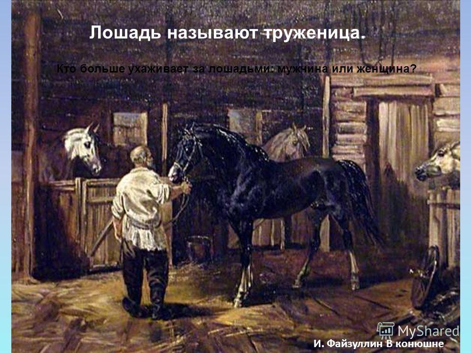 И. Файзуллин В конюшне Лошадь называют труженица. Кто больше ухаживает за лошадьми: мужчина или женщина?