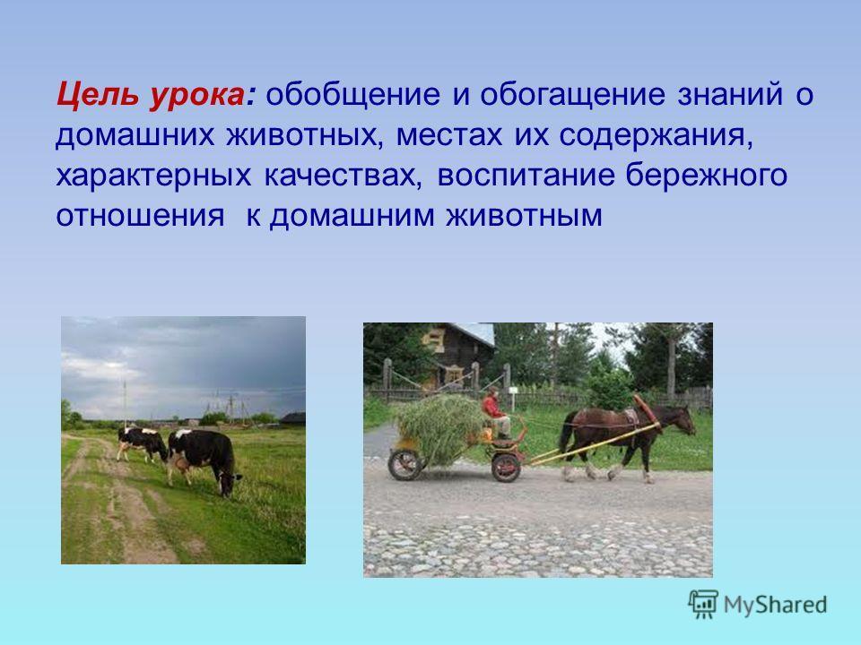 Цель урока: обобщение и обогащение знаний о домашних животных, местах их содержания, характерных качествах, воспитание бережного отношения к домашним животным