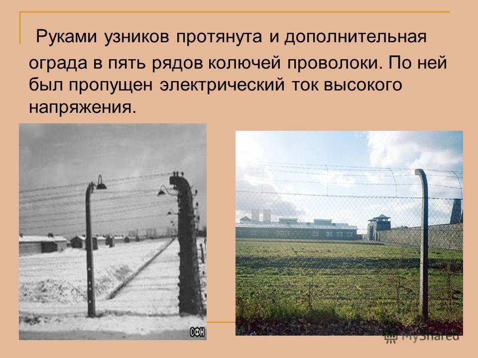 Руками узников протянута и дополнительная ограда в пять рядов колючей проволоки. По ней был пропущен электрический ток высокого напряжения.