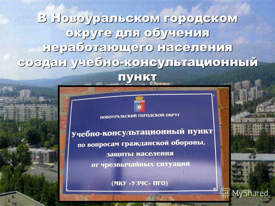 В Новоуральском городском округе для обучения неработающего населения создан учебно-консультационный пункт