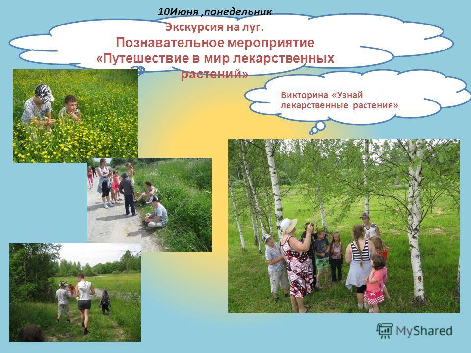 10Июня,понедельник Экскурсия на луг. Познавательное мероприятие «Путешествие в мир лекарственных растений» Викторина «Узнай лекарственные растения»