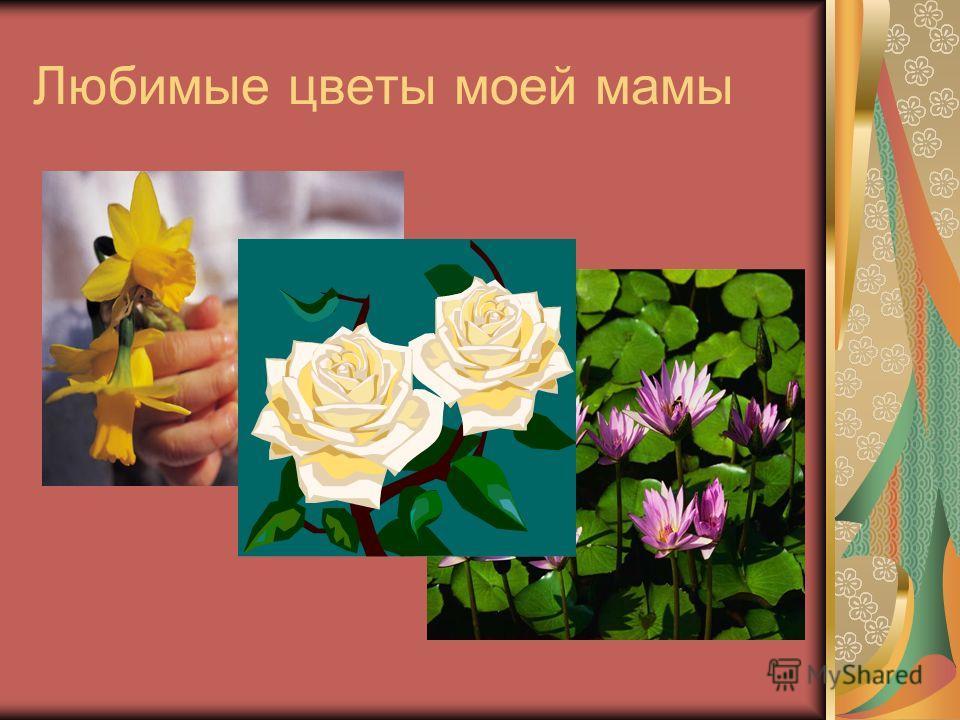 Любимые цветы моей мамы