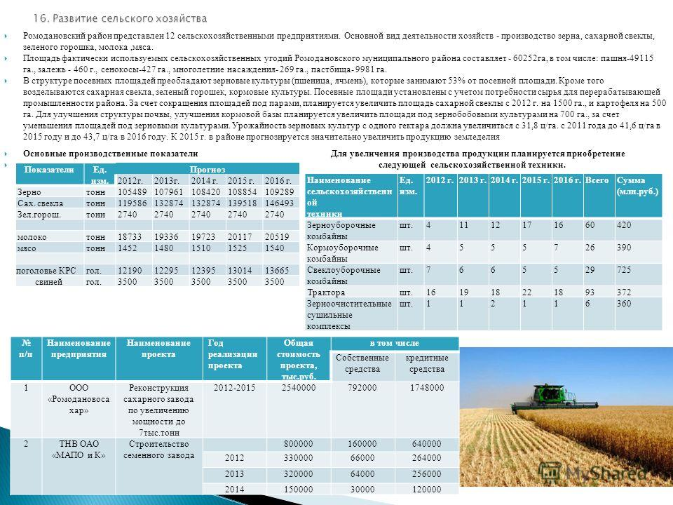 Ромодановский район представлен 12 сельскохозяйственными предприятиями. Основной вид деятельности хозяйств - производство зерна, сахарной свеклы, зеленого горошка, молока,мяса. Площадь фактически используемых сельскохозяйственных угодий Ромодановског