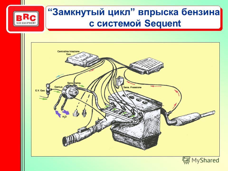 с системой Sequent