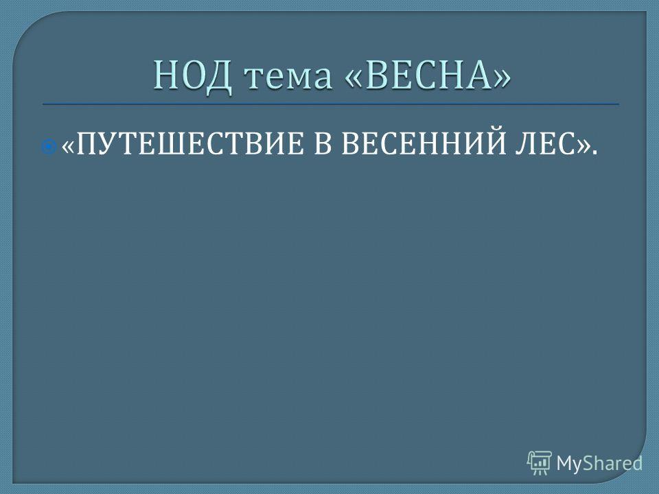 « ПУТЕШЕСТВИЕ В ВЕСЕННИЙ ЛЕС ».