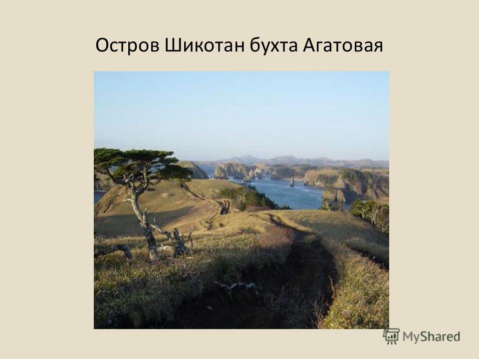 Остров Шикотан бухта Агатовая