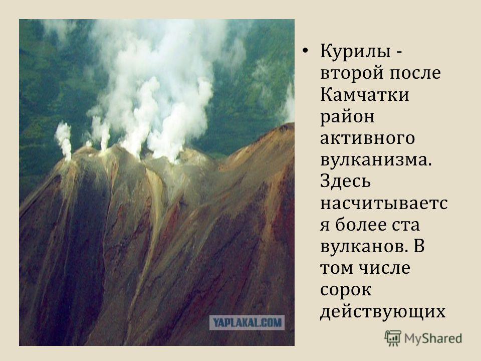 Курилы - второй после Камчатки район активного вулканизма. Здесь насчитываетс я более ста вулканов. В том числе сорок действующих