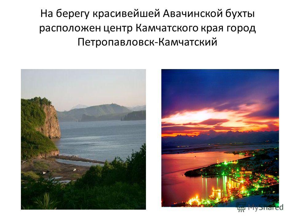 На берегу красивейшей Авачинской бухты расположен центр Камчатского края город Петропавловск-Камчатский