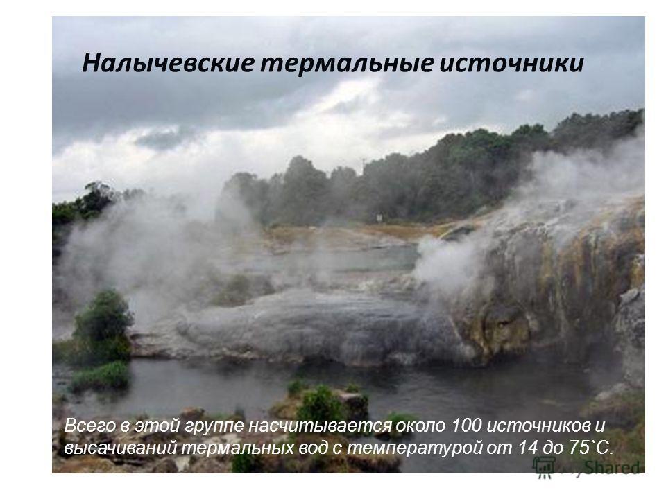 Налычевские термальные источники Всего в этой группе насчитывается около 100 источников и высачиваний термальных вод с температурой от 14 до 75`С.