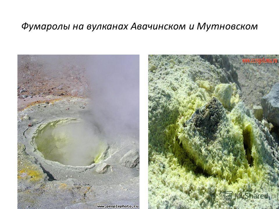 Фумаролы на вулканах Авачинском и Мутновском