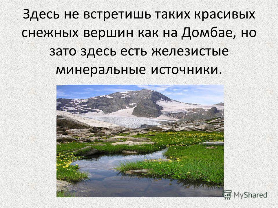 Здесь не встретишь таких красивых снежных вершин как на Домбае, но зато здесь есть железистые минеральные источники.