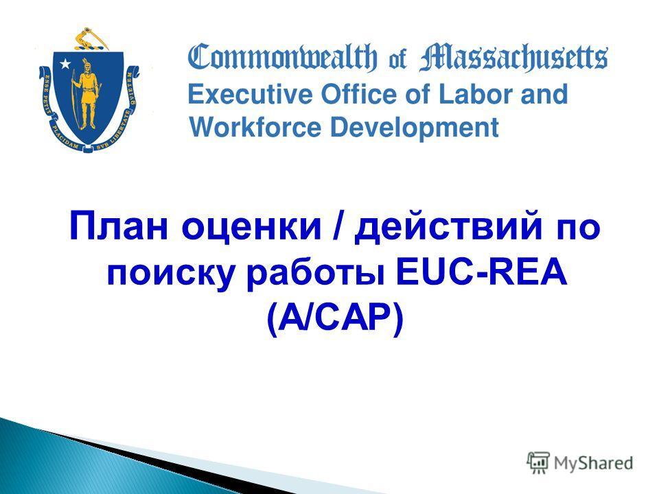 План оценки / действий по поиску работы EUC-REA (A/CAP)