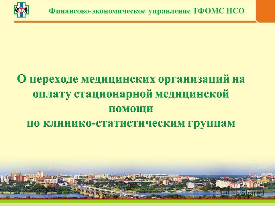 Финансово-экономическое управление ТФОМС НСО