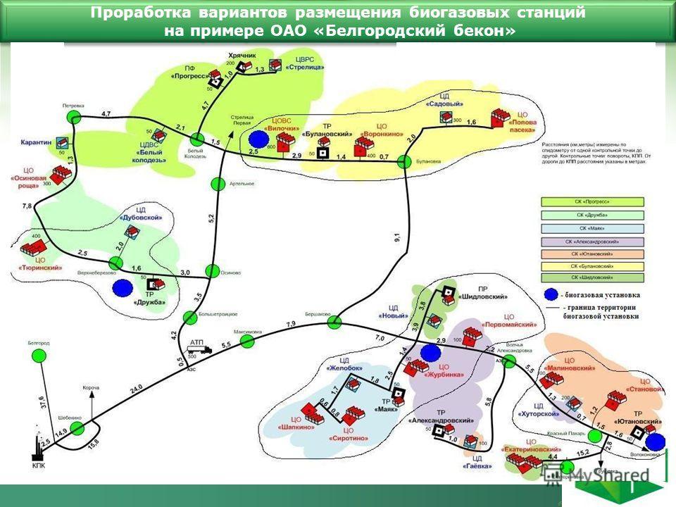 Проработка вариантов размещения биогазовых станций на примере ОАО «Белгородский бекон»