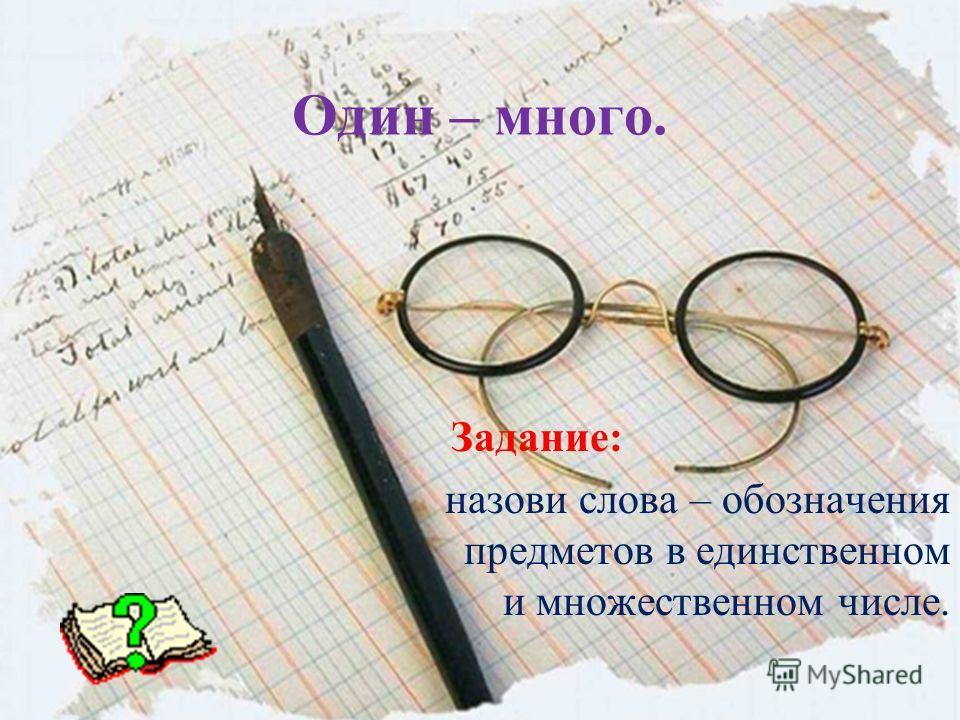 Один – много. Задание: назови слова – обозначения предметов в единственном и множественном числе.