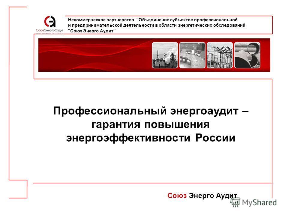 Профессиональный энергоаудит – гарантия повышения энергоэффективности России Союз Энерго Аудит Некоммерческое партнерство
