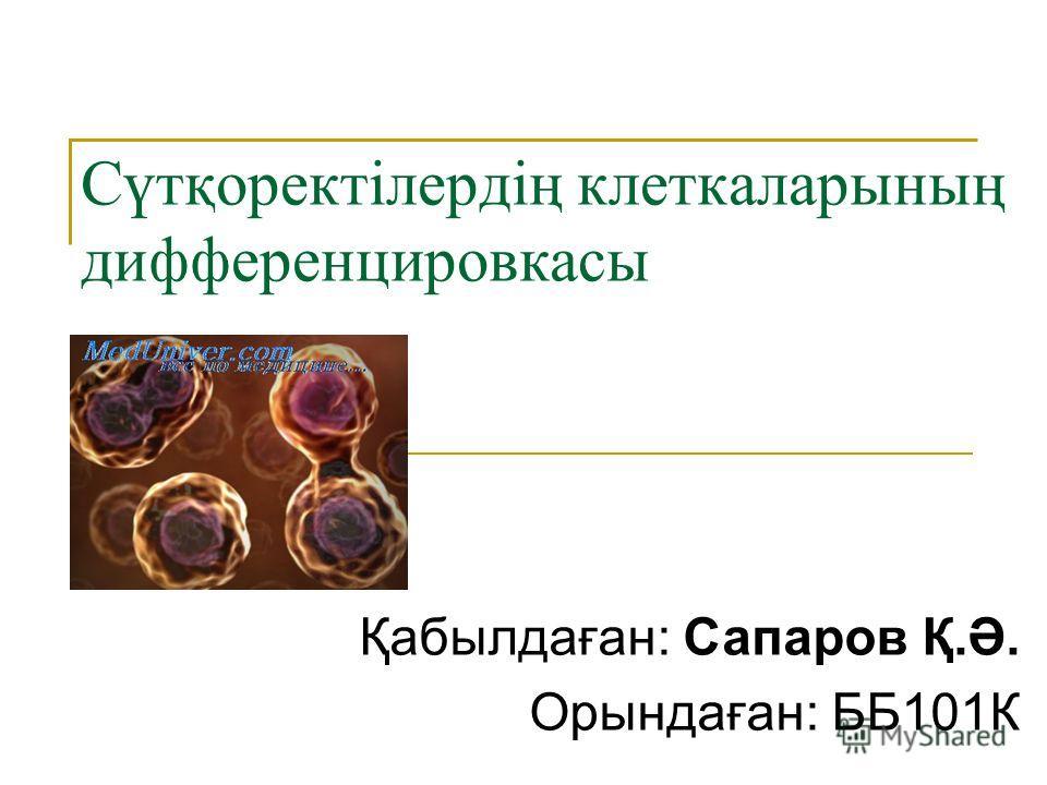 Cүтқоректілердің клеткаларының дифференцировкасы Қабылдаған: Сапаров Қ.Ә. Орындаған: ББ101К Қабылдаған: Сапаров Қ.Ә. Орындаған: ББ101К