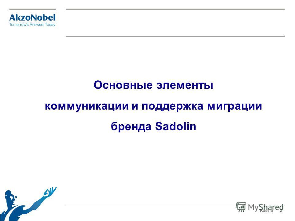 Основные элементы коммуникации и поддержка миграции бренда Sadolin Russia2