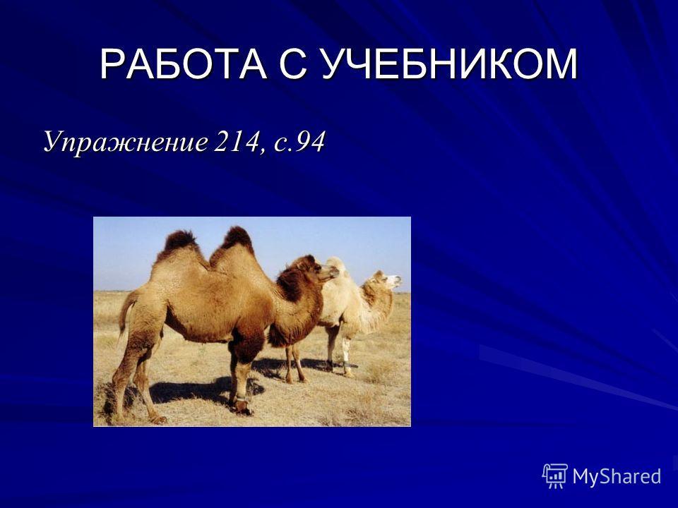 РАБОТА С УЧЕБНИКОМ Упражнение 214, с.94