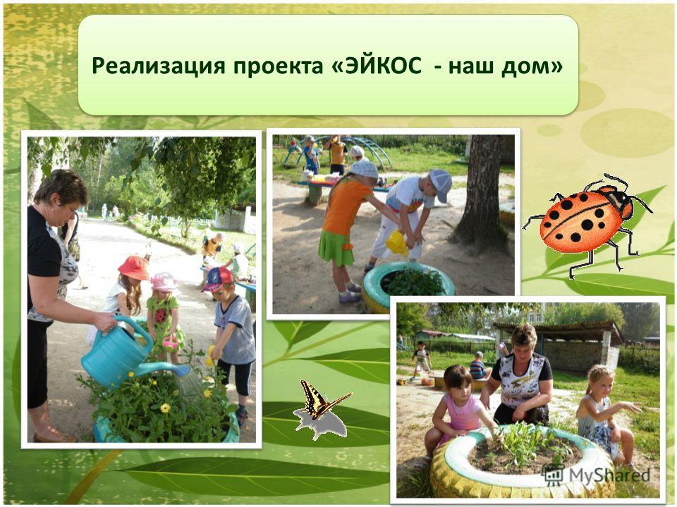 Реализация проекта «ЭЙКОС - наш дом»