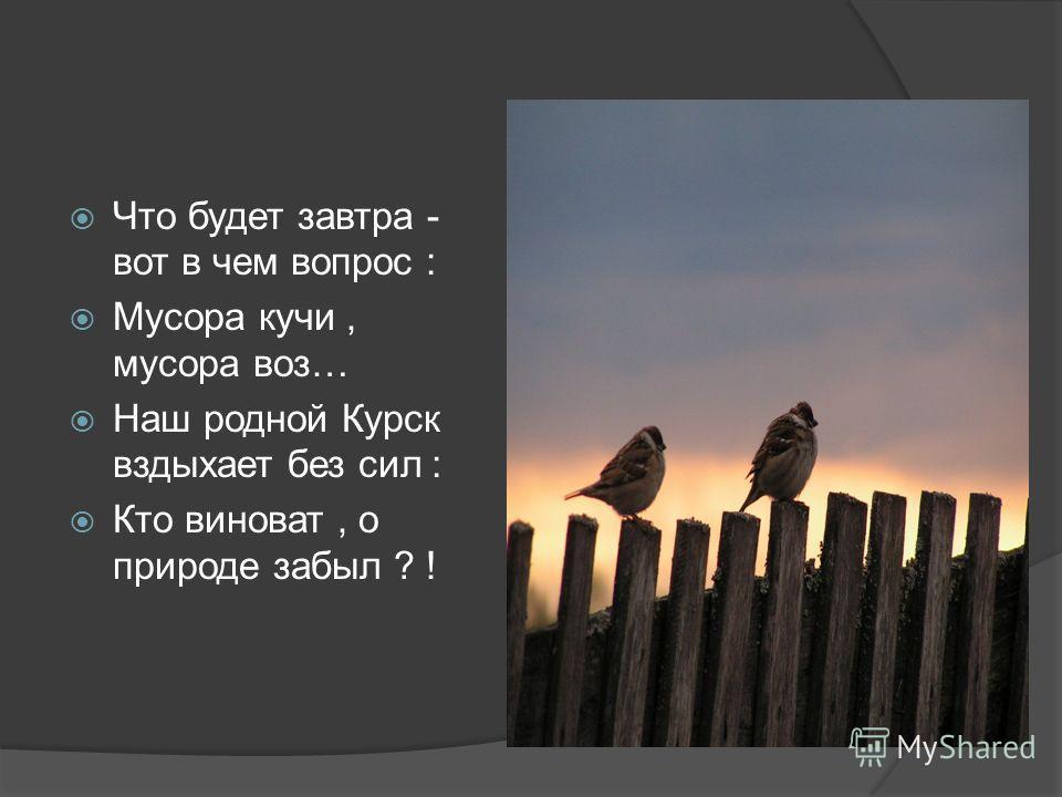 Что будет завтра - вот в чем вопрос : Мусора кучи, мусора воз… Наш родной Курск вздыхает без сил : Кто виноват, о природе забыл ? !