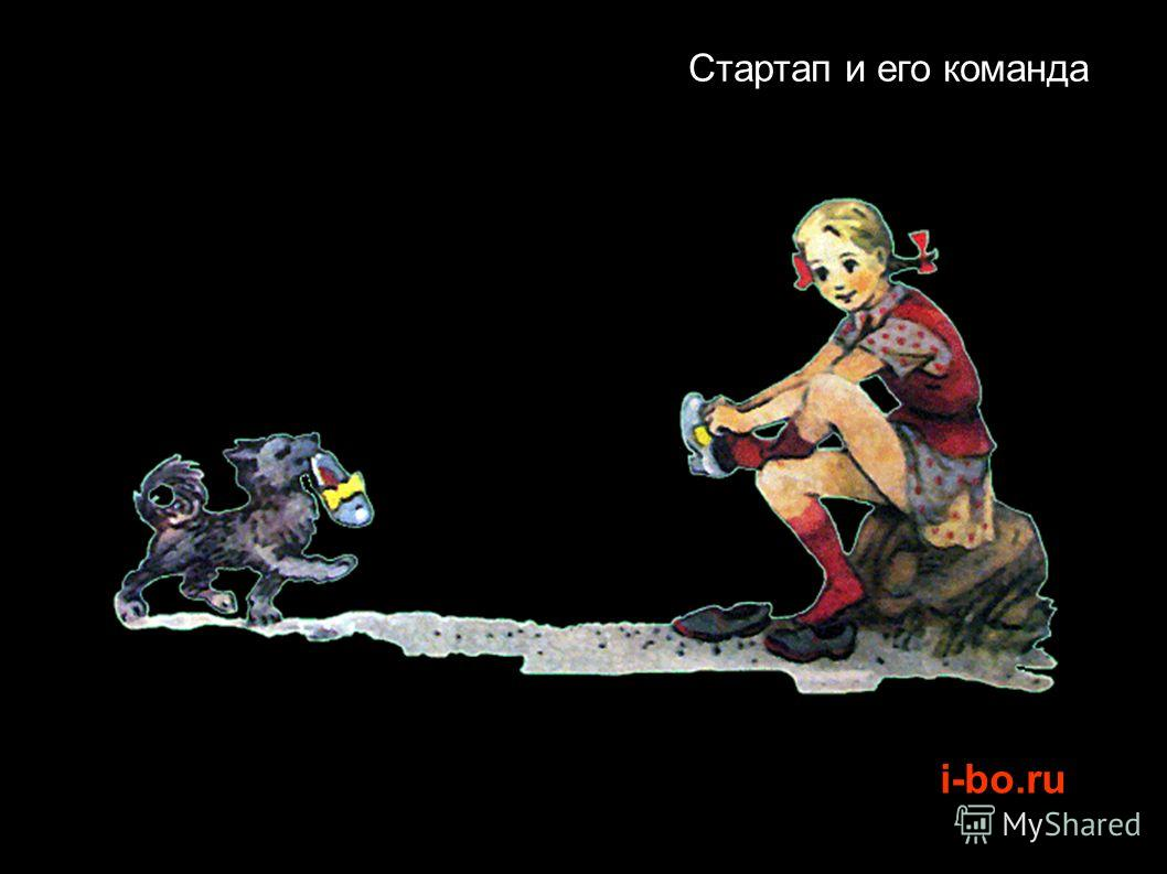 i-bo.ru Стартап и его команда