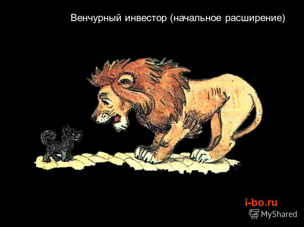 i-bo.ru Венчурный инвестор (начальное расширение)