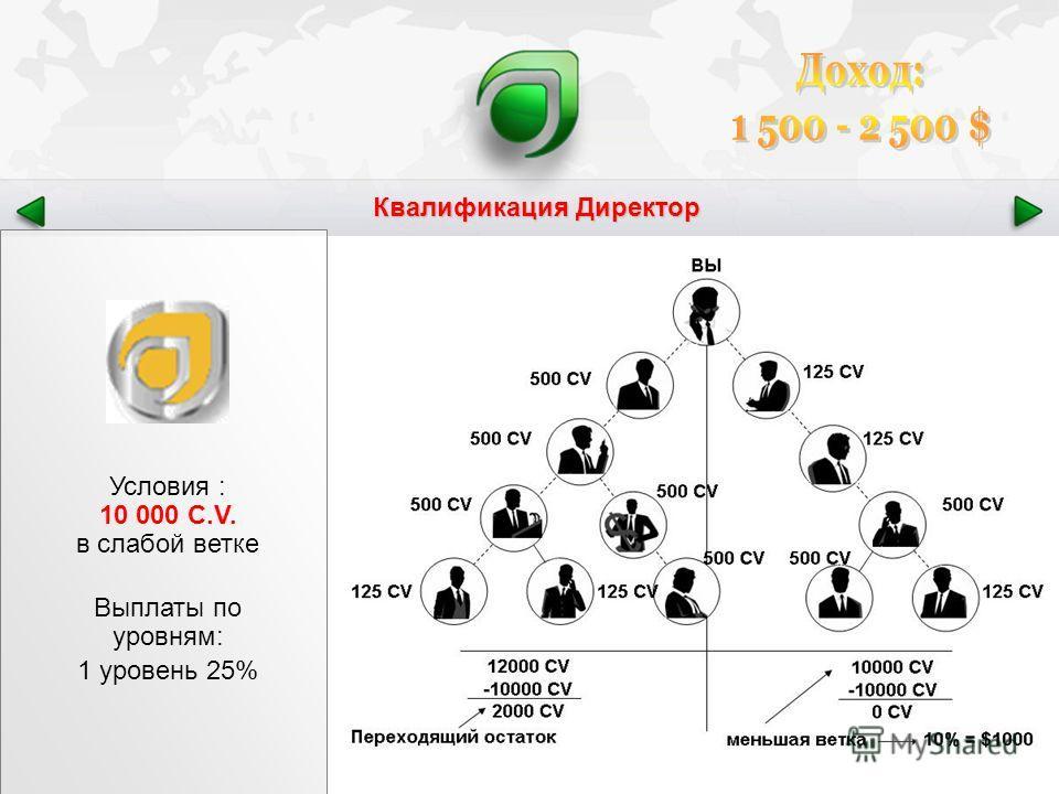Квалификация Директор Условия : 10 000 C.V. в слабой ветке Выплаты по уровням: 1 уровень 25%