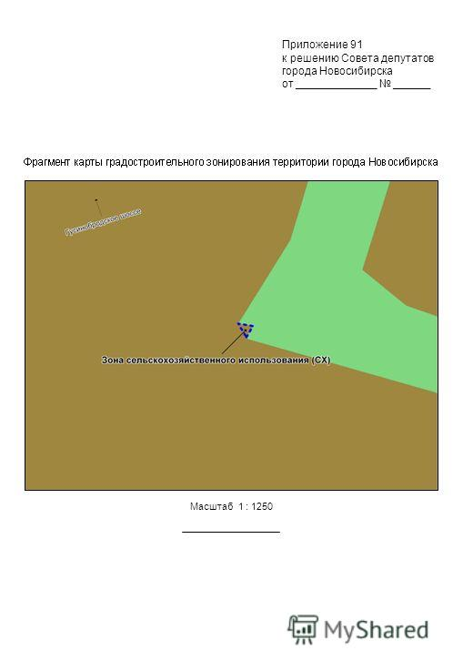 Масштаб 1 : 1250 Приложение 91 к решению Совета депутатов города Новосибирска от _____________ ______