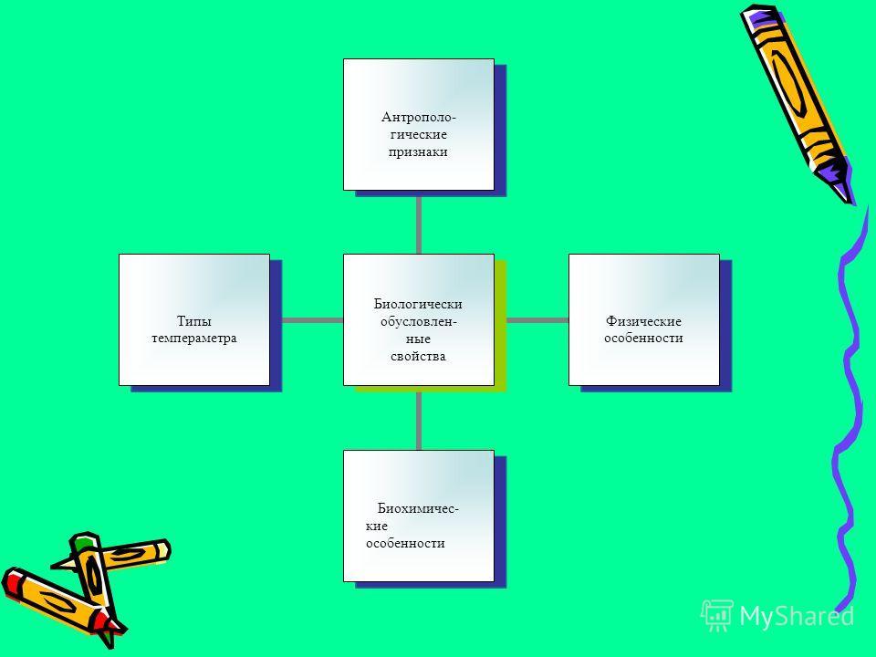 Биологически обусловлен- ные свойства Антрополо- гические признаки Физические особенности Биохимичес- кие особенности Типы темпераметра